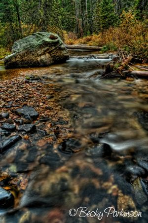 mountain_stream_001.jpg